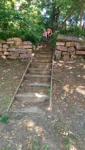 stepspp